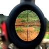 Как делается правильная пристрелка оптического прицела пневматической винтовки 1