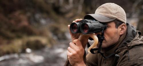 Какой бинокль выбрать для наблюдений за птицами, какой лучше приближает 4