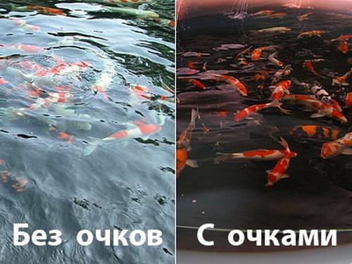 Поляризационные очки для рыбалки - отзывы рыбаков 2